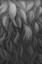 Sketchbruary 06 - Fur study by volnaib