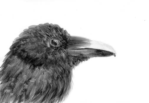 Inktober 07 - Raven