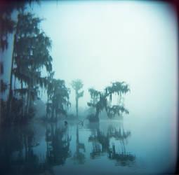 seaweed ghosts