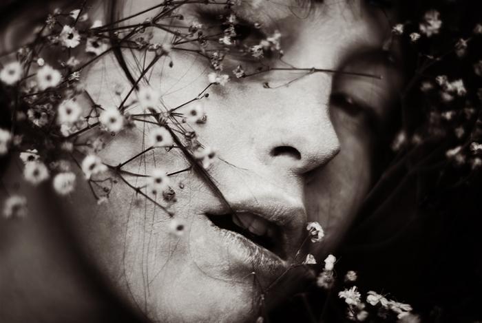 грусть цветы картинки