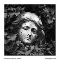 Mourning Ivy