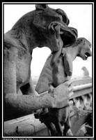 Gargoyles-Notre Dame d' Paris by misteriddles