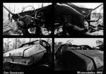 Car Carcasses