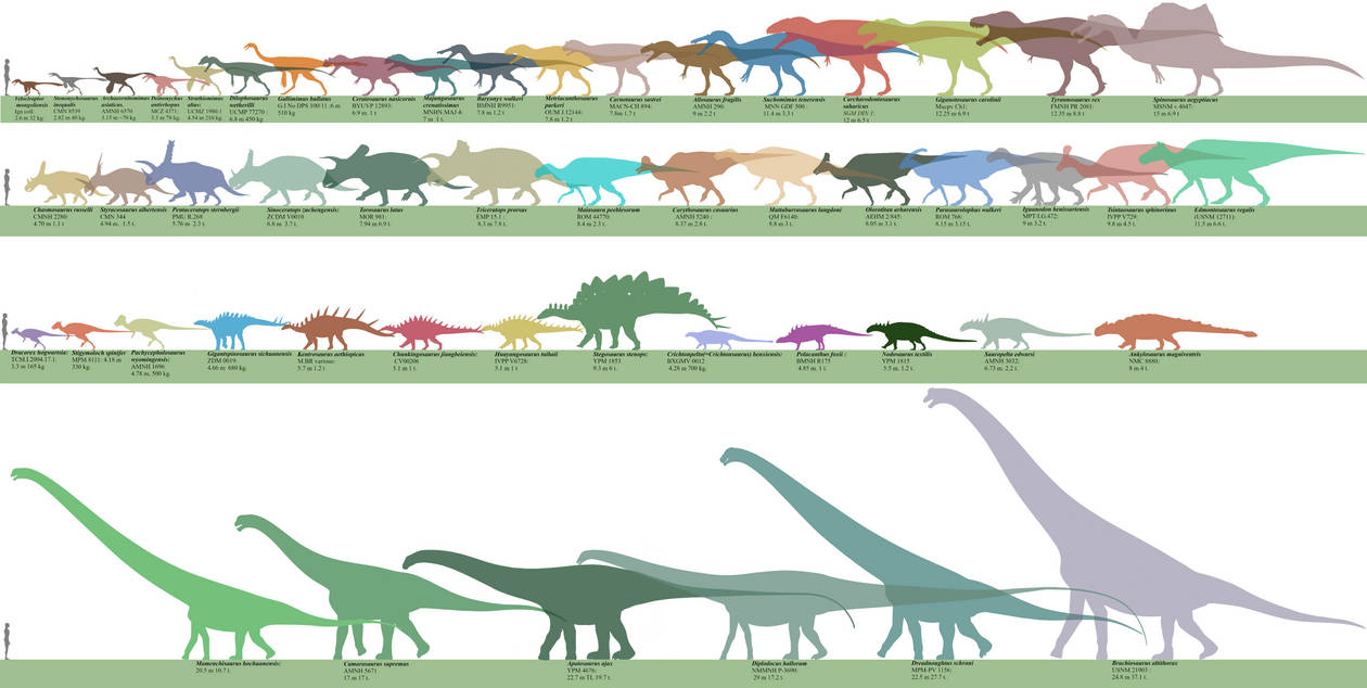 Jurassic World Evolution Dinosaurs chart. by Franoys