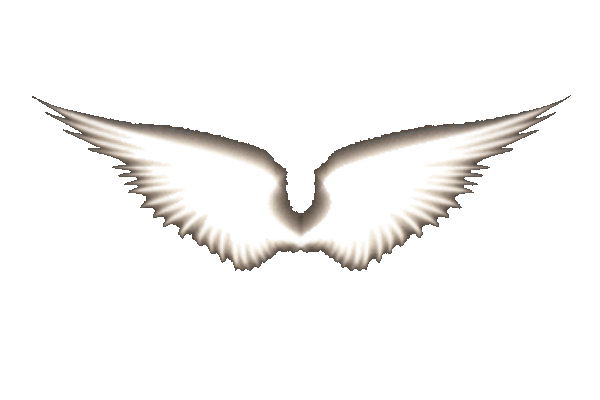 angel wings black background - photo #34