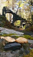 Stone Stairs and mushrooms