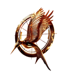 Catching fire icon