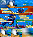 Sonic the Hedgehog: The Speed of Life