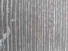Rotten wood texture by BelilStock
