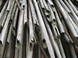 Straws stock by BelilStock