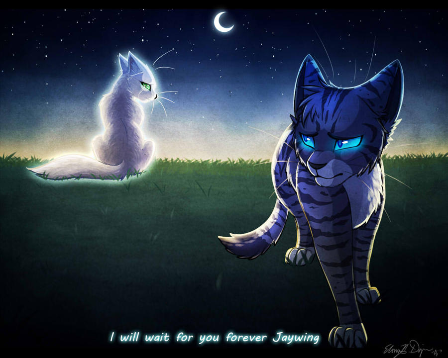 Warrior Cats Half Moon