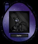 [S-L] Jupiter App