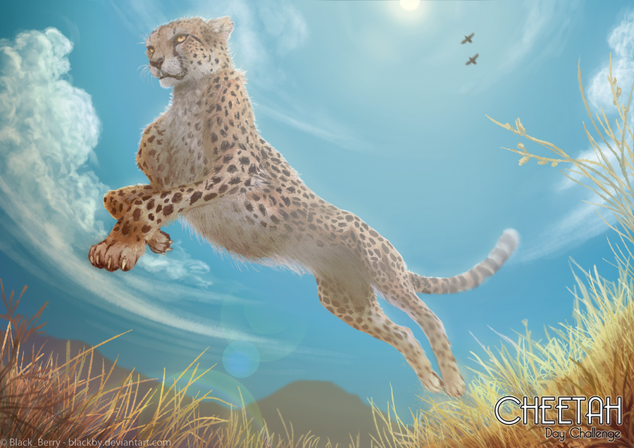 Cheetah Day Challenge 2012 by BlackBy