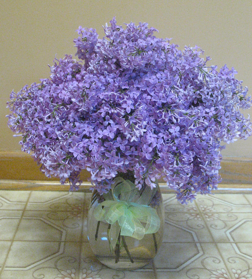Image Gallery Lilac Bouquet