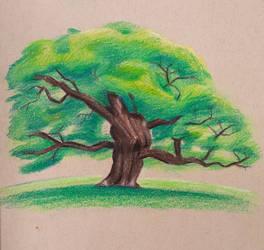 Polychromos Tree by drawingfreak50187