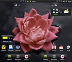 Galaxy Tab - 02102011