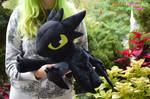 Floppy Toothless plush. Twice the size :D