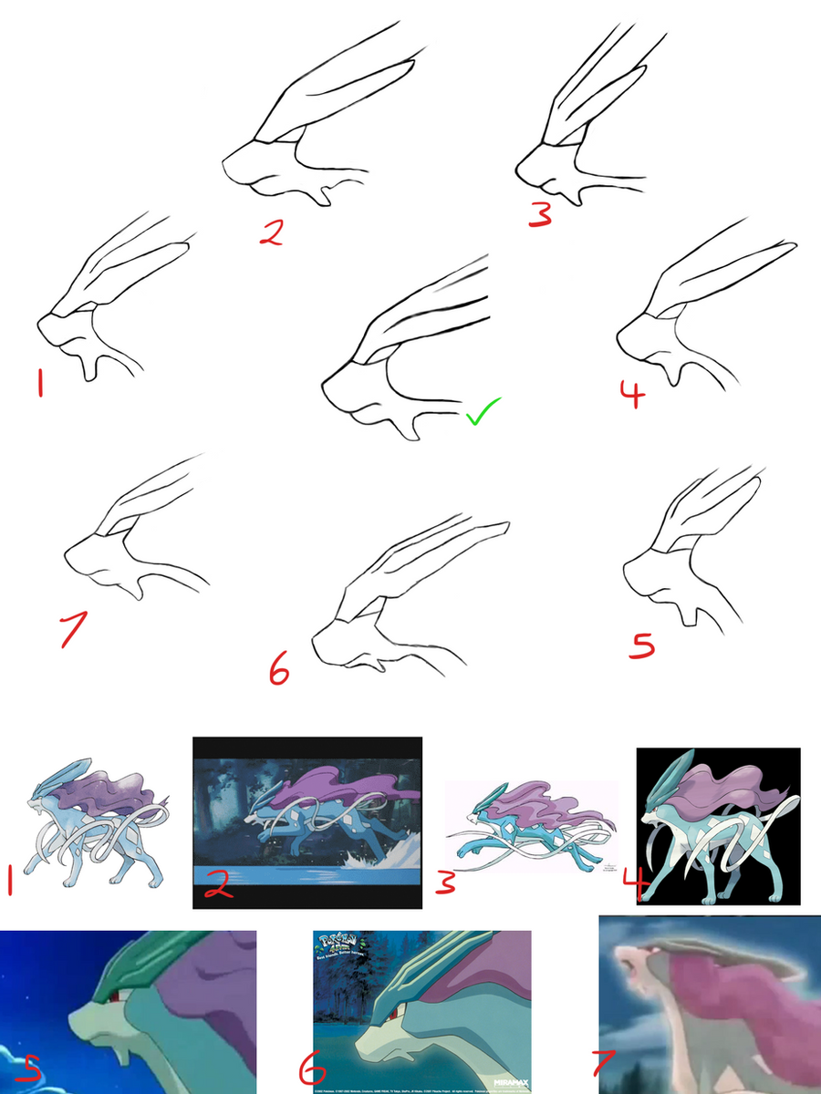 Suicune muzzle/head in profile Variations by Suicunesrider