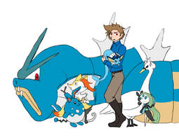 2p!Denmark's Pokemon Team