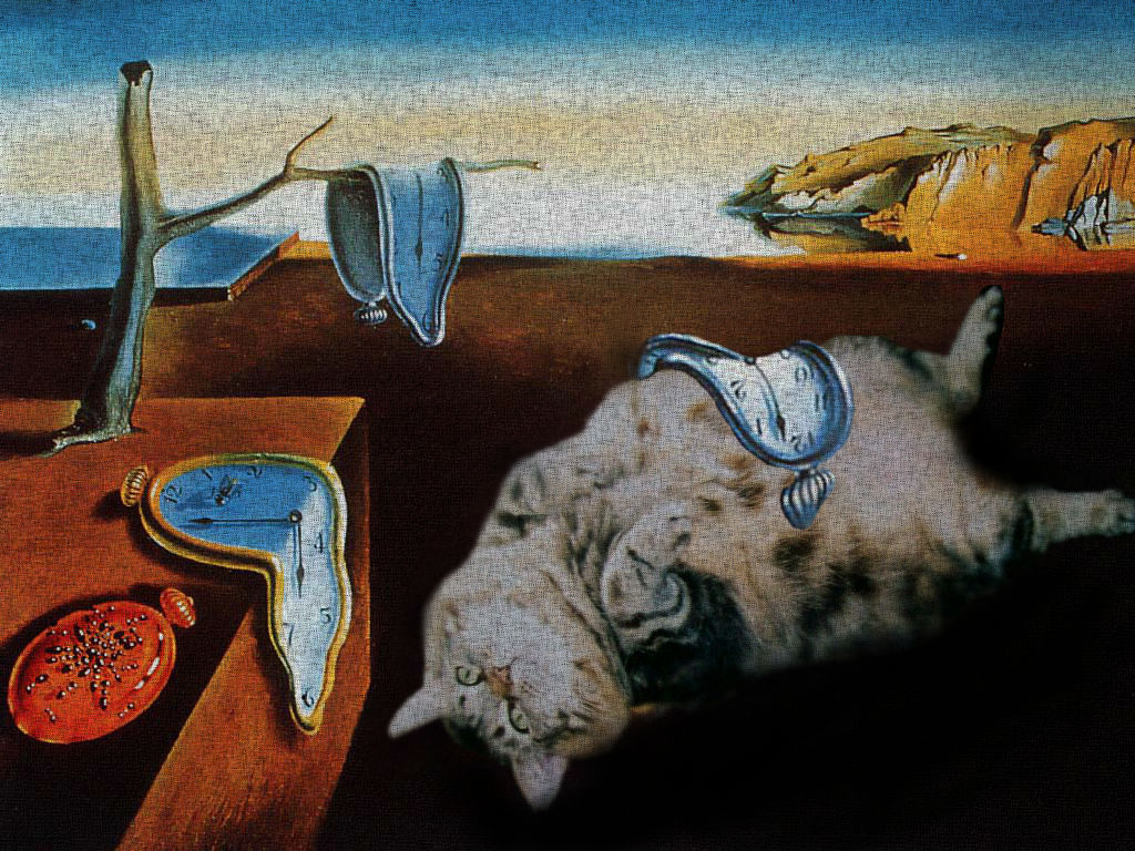 The Persistence of Cats