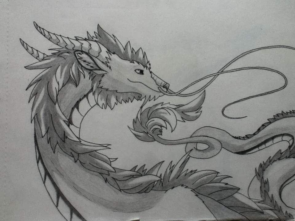 Chinese Dragon by evelyn-casey