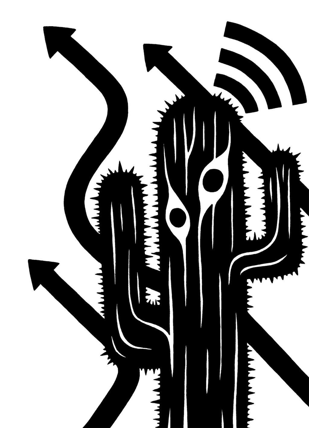 KaktusKast 02