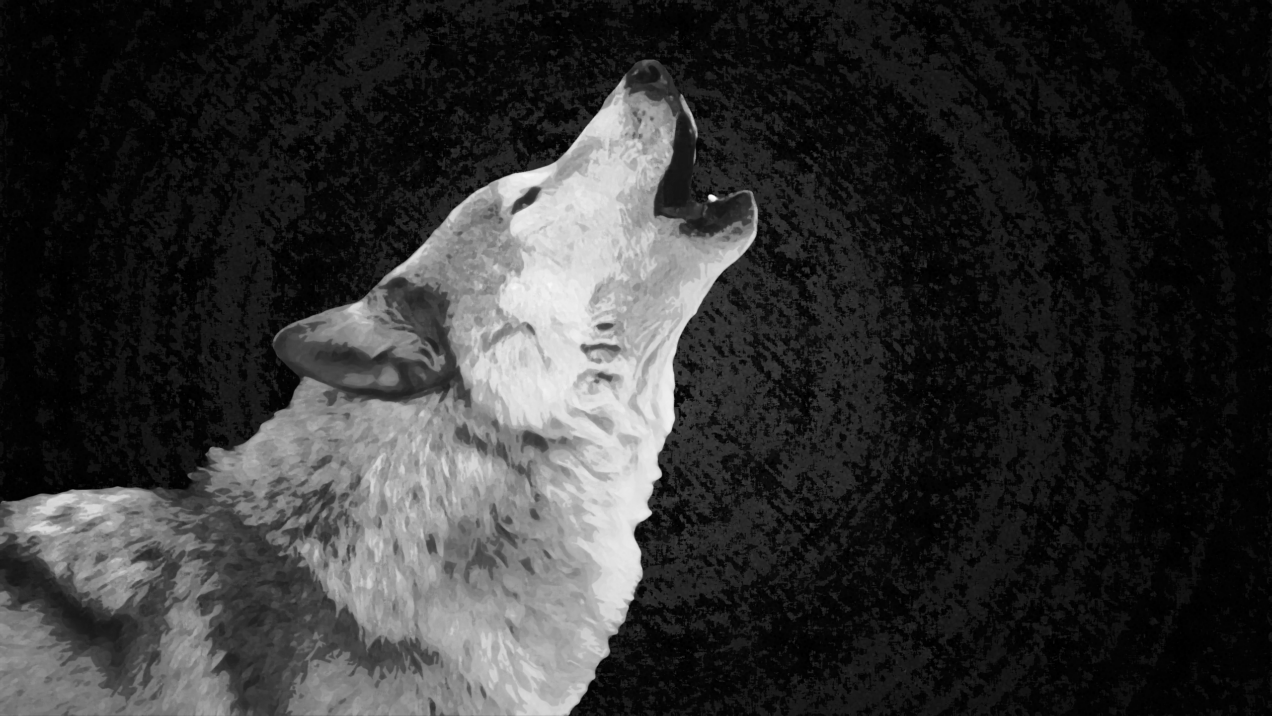 Wolf Wallpaper White By Xhuskie On Deviantart