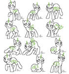 FTU pony adopt base