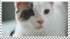 cat stamp by OmegaDreamSeeker11