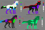10 point canine adopts
