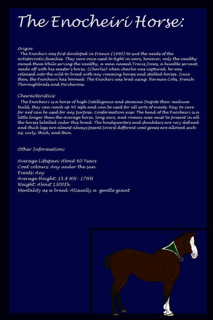 Enocheiri Breed Sheet  by werewwulf
