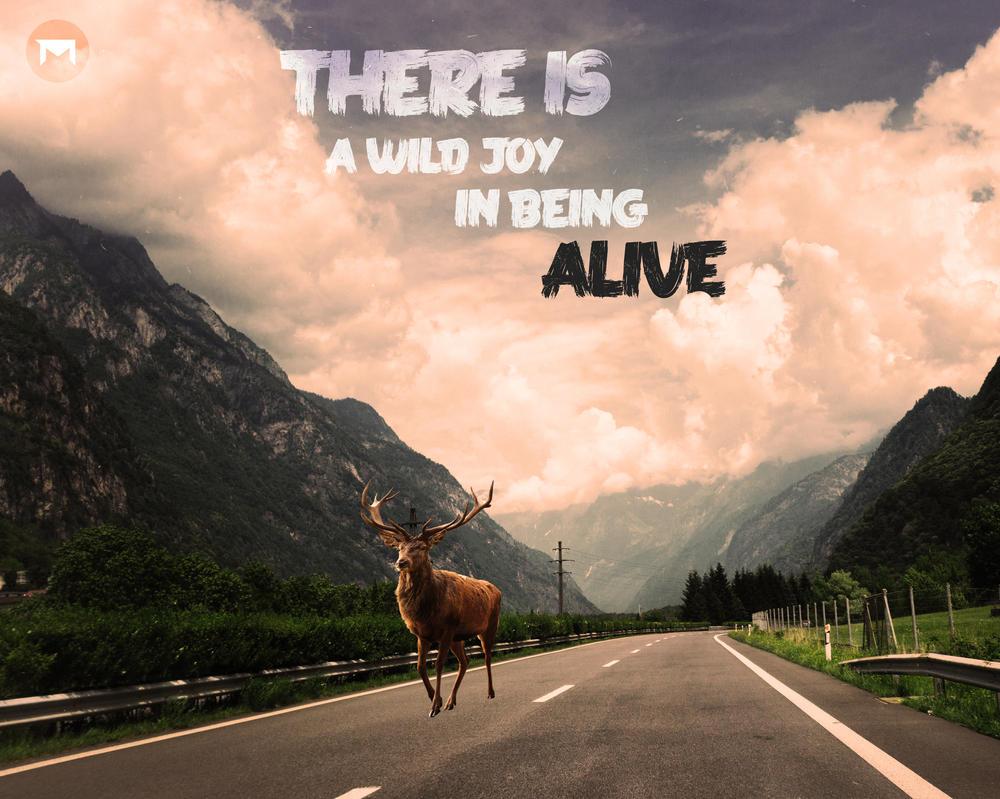 Wild Deer by xSkillerx