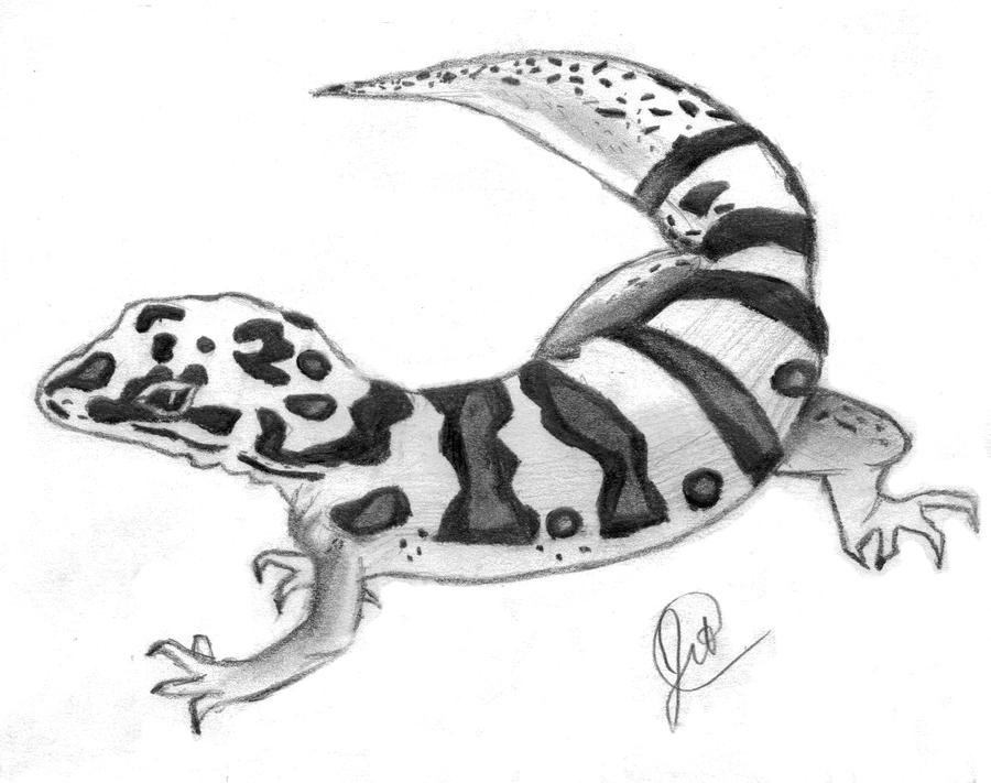 leopard gecko teaandbicuits on deviantart