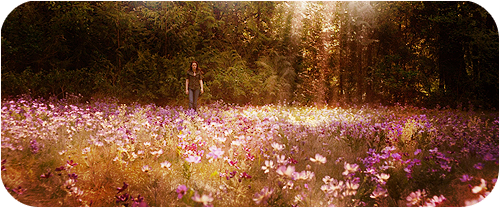 Meadow 2 by GABY-MIX
