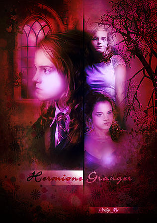 Pure blood Hermione