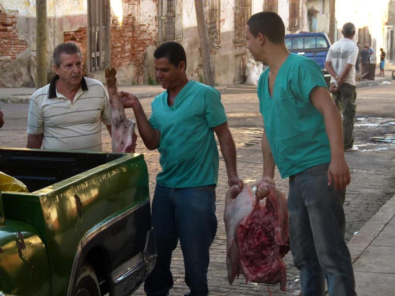 Cuba . Meat transport by utico