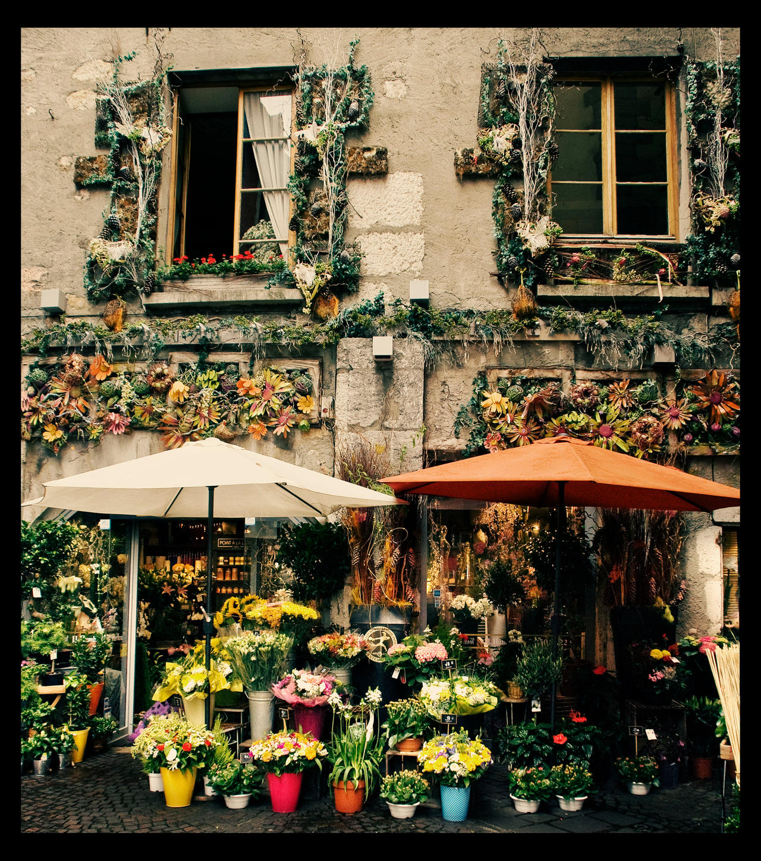 The Flower Shop by kiriaki on DeviantArt