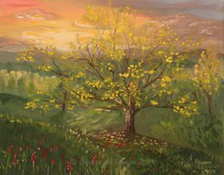 Wise tree by Oksana007