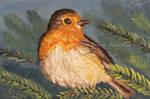 European Robin - Bird by Oksana007