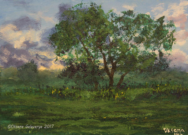 Trees On The Sunset by Oksana007
