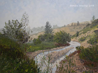 The creek - Park Nahal Soreq