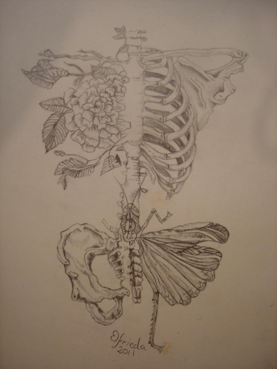 Dark Love Drawings Surreal Anatomy by mus...