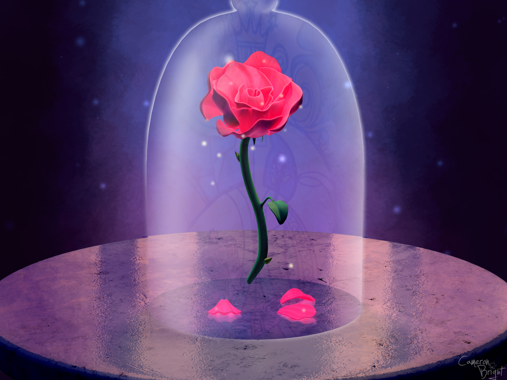 Enchanted Rose By Camtoonist On DeviantArt