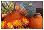 An Autumn Abundance