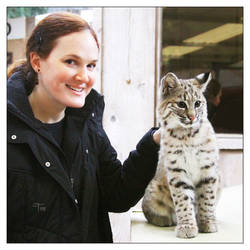 My Bobcat and Me