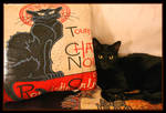 Deux Beaux Chats Noirs by TeaPhotography