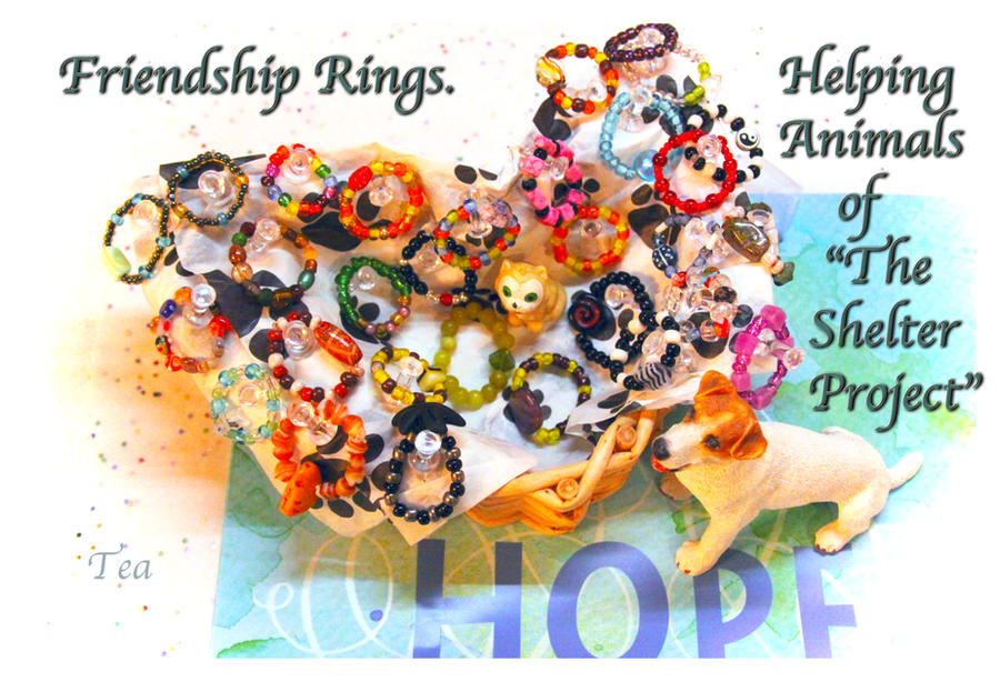 Friendship Rings- Updated by TeaPhotography