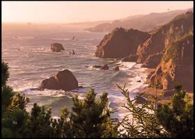 Pacific Northwest Beauty