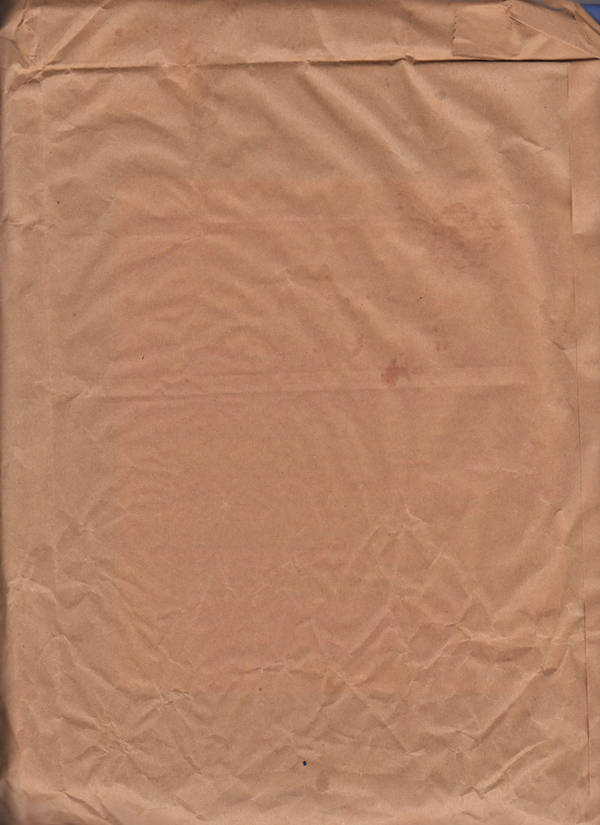 brown paper bag 3 by stockpuppet