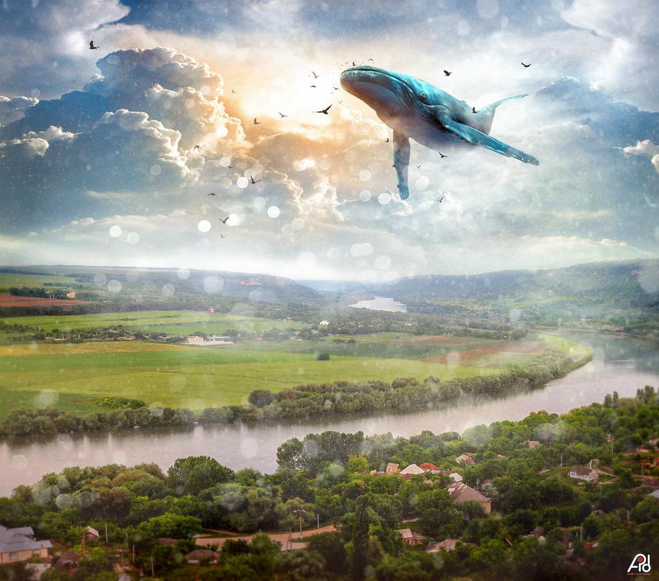 Dreams by t3-iura